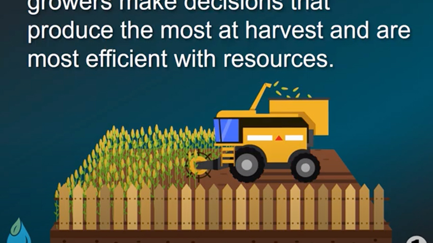 Graphic with equipment working in agriculture field