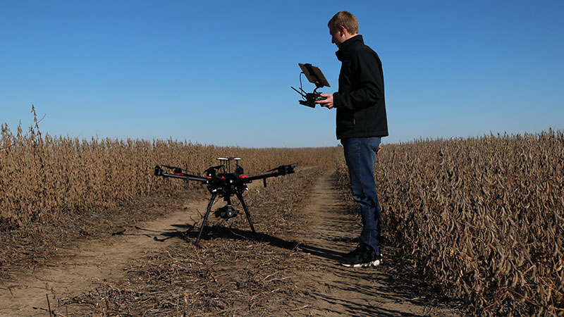Person operating drone in agriculture field