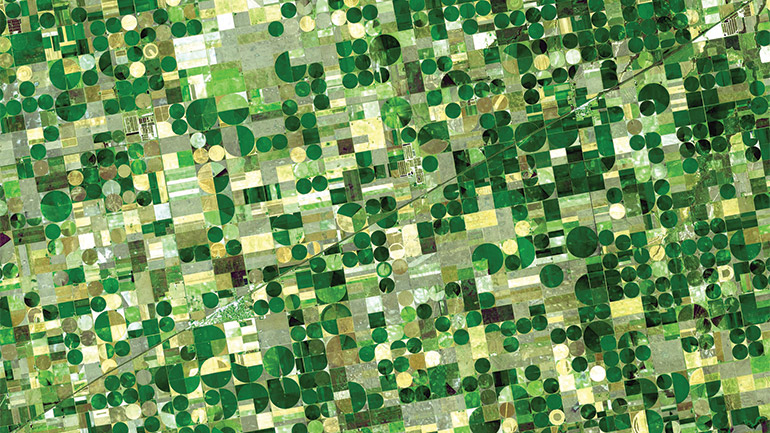 A view of agriculture fields from space